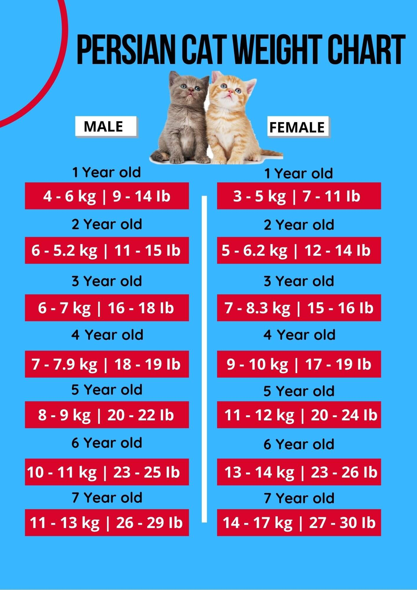 persian cat weight chart
