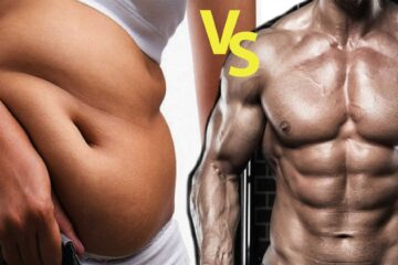 fat vs muscles