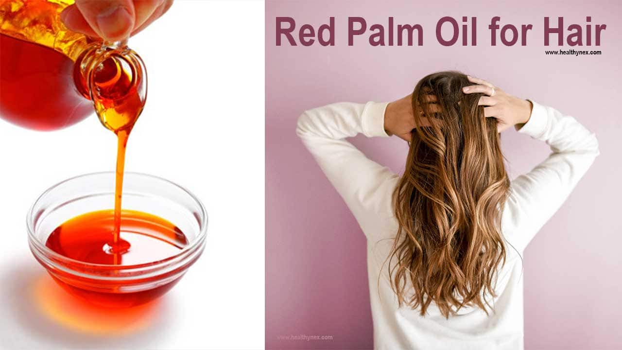red-palm-oil-for-hair